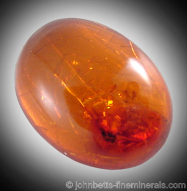 Amber with Insect Inclusion
