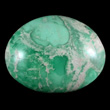 Splotchy Green & White Variscite