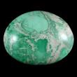 Splotchy Green & White Variscite