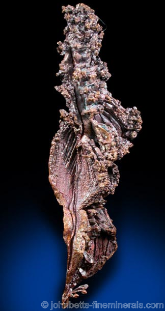 Copper Growths from Dzezkazgan, Qarqaraly (Karaganda), Kazakhstan