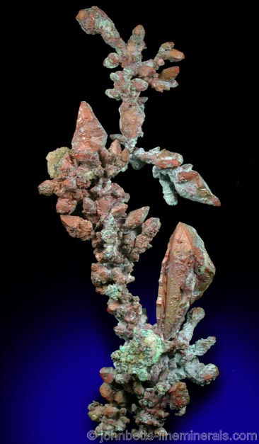 Dendritic Copper Growths from Ray Mine, Mineral Creek District, Pinal County, Arizona