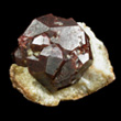 Almandine Garnet in Quartz Matrix
