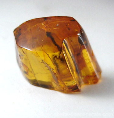 Small Polished Amber from Baltic Sea, near Gdansk, Poland