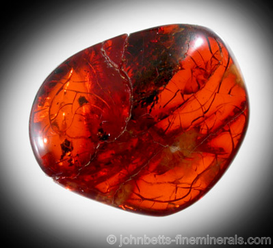 Red Amber from Kaliningrad, Russia