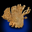 Fan Shaped Gold Formation