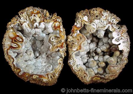 Quartz Pseudomorph after Coral