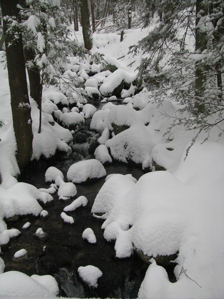 Powdery Snow