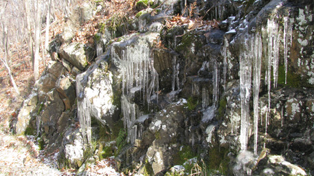 Icicles Hanging from Rock