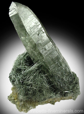 Actinolite Needles with Quartz from Alchuri, Shigar Valley, northeast of Skardu, Gilgit, Pakistan