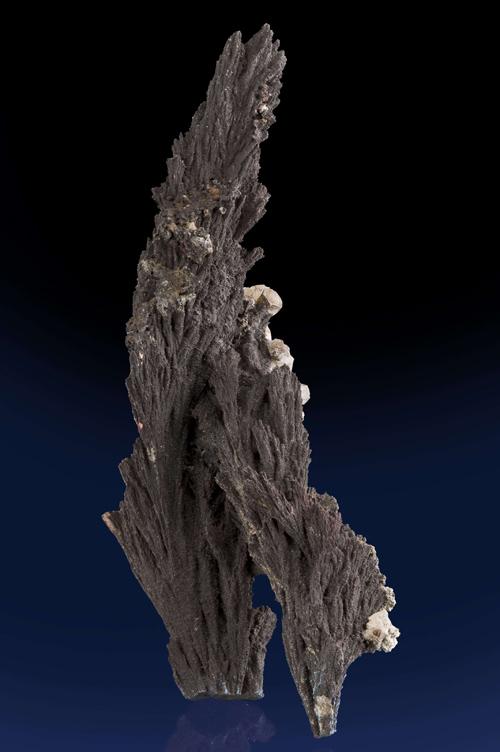 Arborescent Alabandite Crystals