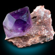 Single Amethyst Crystal on Matrix