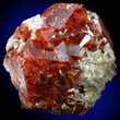 Deep Reddish-brown Andradite