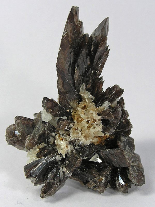 Axinite-(Mn) Elongated Cluster