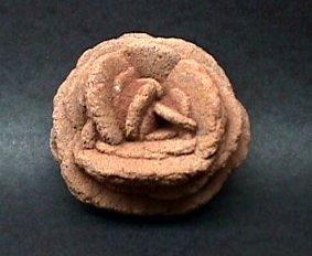 Barite Desert Rose