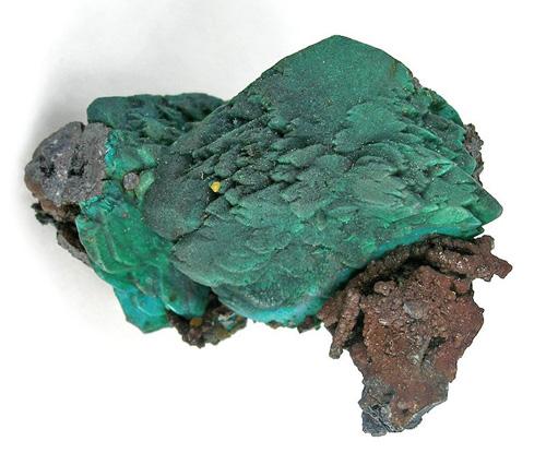 Chryocolla Pseudo After Malachite