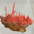 Elongated Crocoite on Matrix