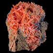 Reticulated Crocoite