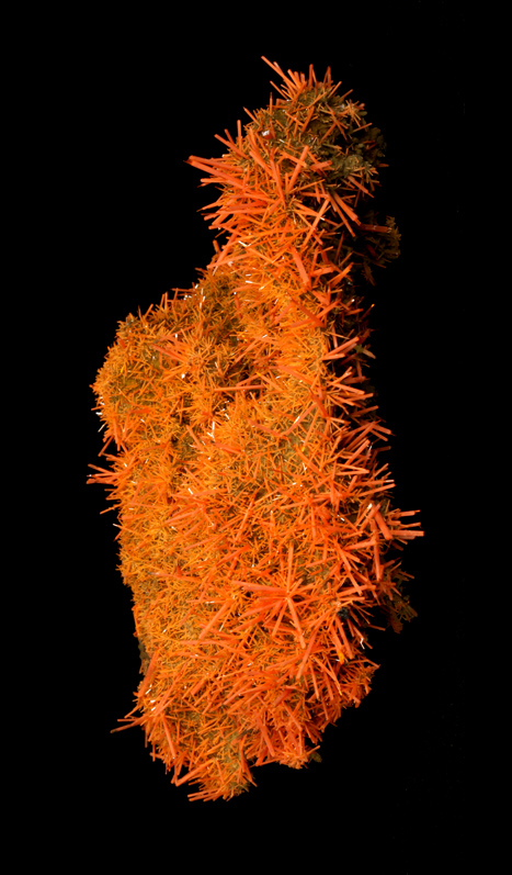 Exceptional Crocoite Plate