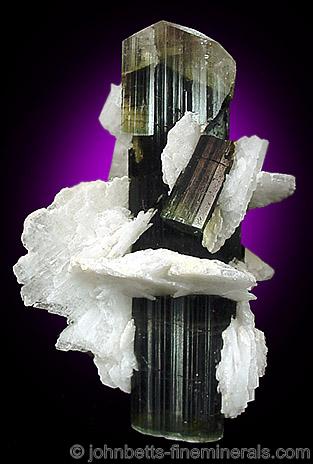 Prismatic Elbaite in Cleavlandite from Stak Nala, Pakistan