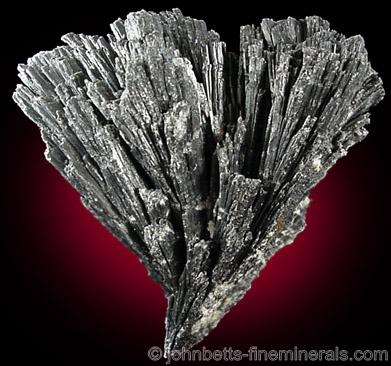 Fan-Shaped Black Kyanite from Nova Era, Minas Gerais, Brazil