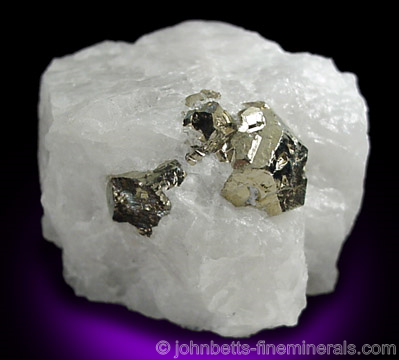 Pyrite in White Quartz