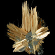 Acicular Golden Rutile Spray