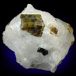 Siderite with Cryolite
