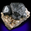 Large Black Sphalerite on Dolomite