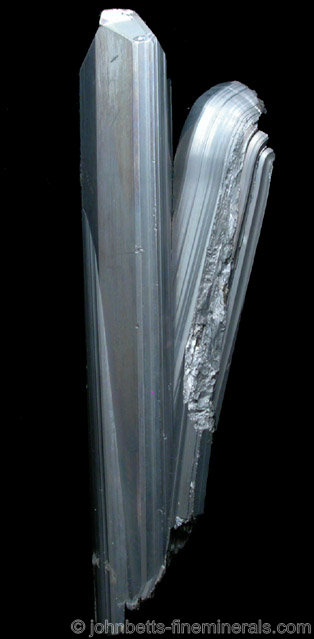 Twinner Stibnite with Curved End