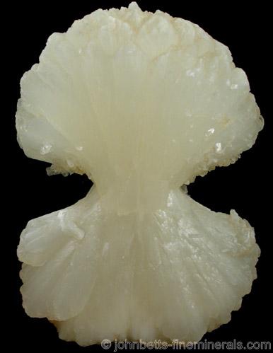 White Stilbite Bowtie