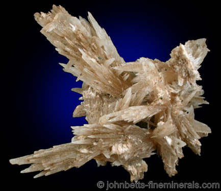 Complex Elongated Strontianite Crystals