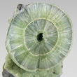 Concentric Radial Wavellite