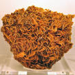 Large Platy Wulfenite